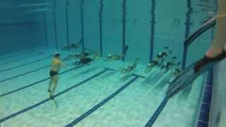 CFIP - Entraînement MC à la piscine de l