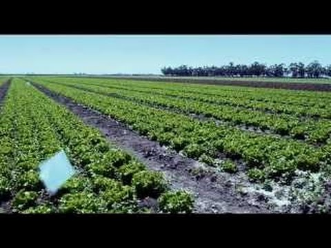 California Drought Documentary - A State of Emergency