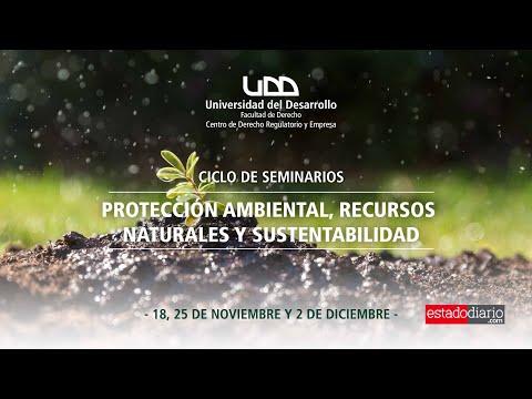 Sesión I - Ciclo de Seminarios: Protección Ambiental, Recursos Naturales y Sustentabilidad