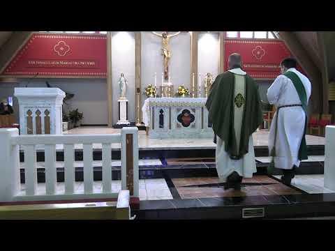 Daily Mass 11/20/20