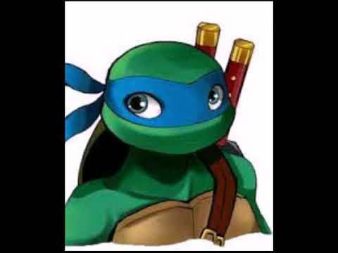 Boyfriend Scenarios: how you meet: TMNT leo x reader