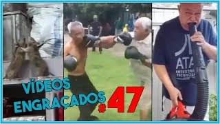 VIDEOS ENGRAÇADOS, TENTE NÃO RIR COM ESSES VIDEOS DIVERTIDOS. #47 SÓ PRA RIR