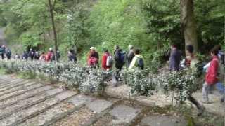Castelpiétonics fait ses 47km du 47 2012