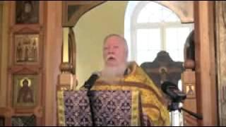 видео Отношение церкви к ЭКО: мнение и отношение православия и ислама