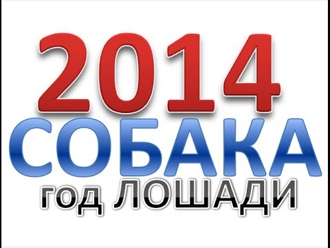 Гороскоп на 2013 год Лошадь -