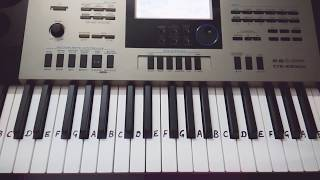 Galti se mistake on Keyboard Tutorial|Harmonium|Piano|Easy play for beginners.