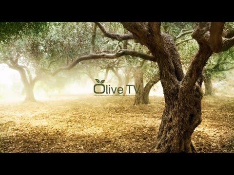 OLIVE TV UK Live