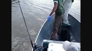 Río Caura Enero-12 Maripa
