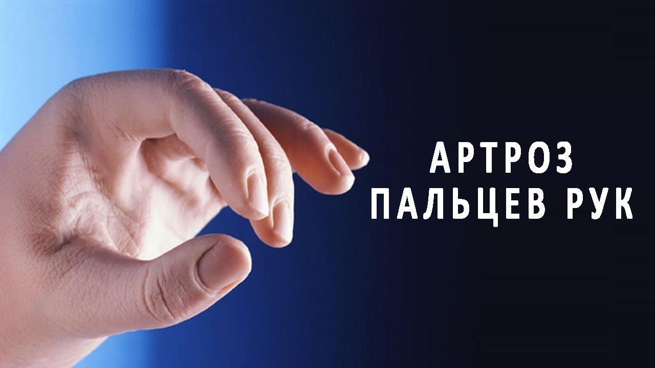 Все, что нужно знать о рынке Форекс в Беларуси | …
