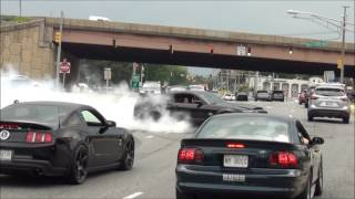 Download EPIC Burnout Shelby GT500 Super Snake // Diesel Truck Pulled Over // Sick Burnout Mustang Cobra !!! Mp3 and Videos