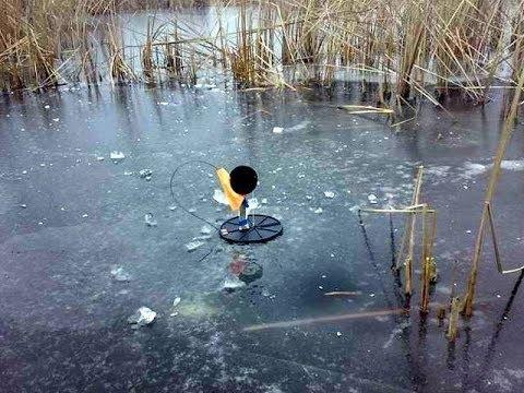 Где ставить жерлицы по первому льду