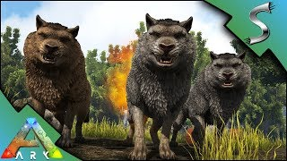 TAMING A DIREWOLF PACK! - Ark: Survival Evolved [S4E14]