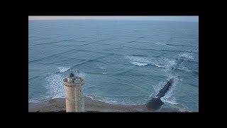Если вы увидите КВАДРАТНЫЕ ВОЛНЫ в море, быстро выйдите из воды