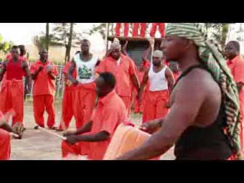 Download Basaja gidan yari laters video