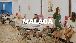 Learn Spanish in MALAGA  - don Quijote Spanish Schools