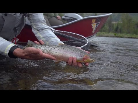 Scientific Anglers Fly Fusion TV Web Series - Episode 3