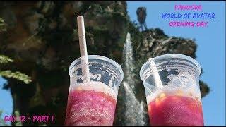 Walt Disney World May 2017 - PANDORA - The World of Avatar - Day 12 - Part 1 | DisneyDayley