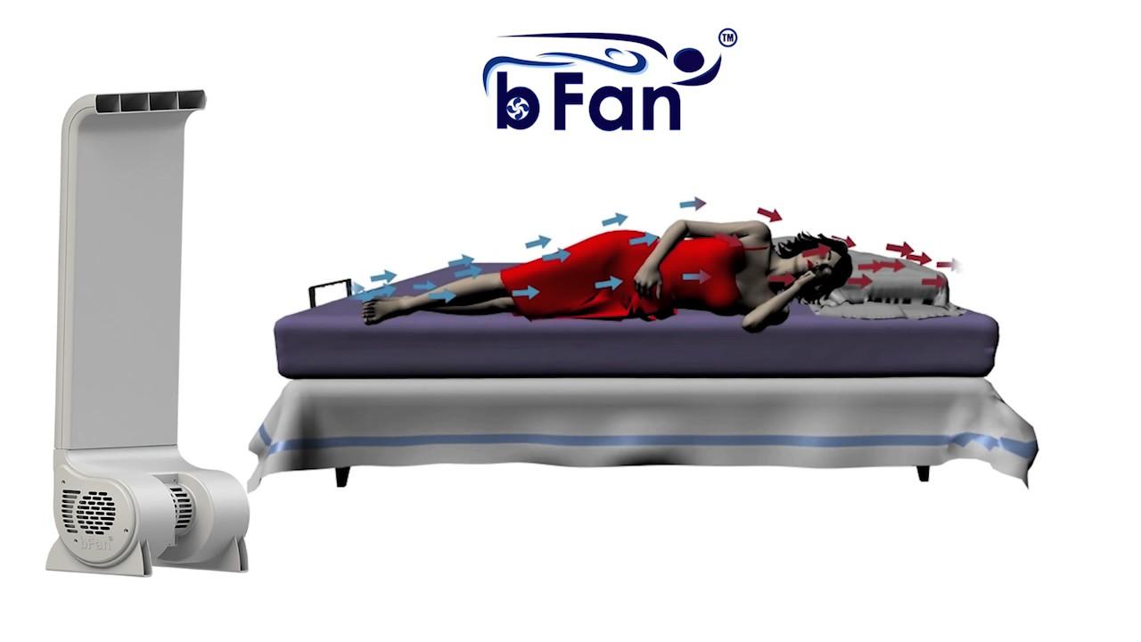 The Bfan