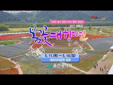 [울산시] 2017 태화강대공원 봄꽃대향연(5월11일~5월14일)