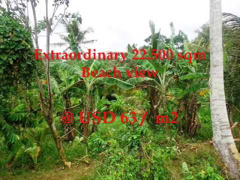 Property for sale in Bali, amazing beach and rice fields view land for sale in Tabanan Bali