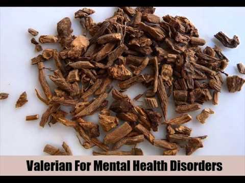 6 Herbal Remedies For Mental Health Disorders