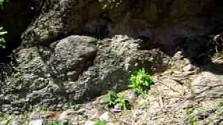 la aguacaliente gorogachi chinipas chihuahua