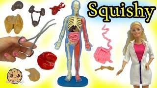 Baixar Squishy Human Anatomy with Scientist Teacher & Student Video