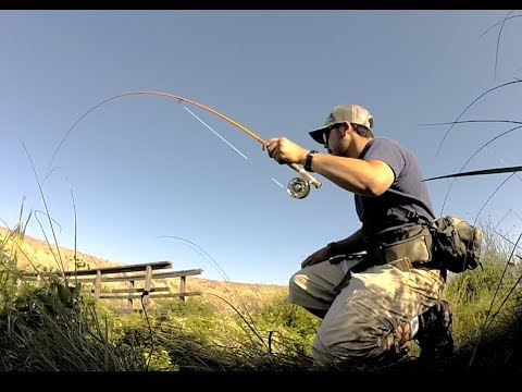 Fly Fishing Rocky Ford Summer 2017
