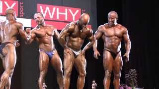Results - Masters Over 40 - Final - NABBA World 2013