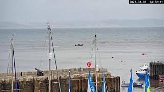 Preview of stream Lyme Regis Harbour