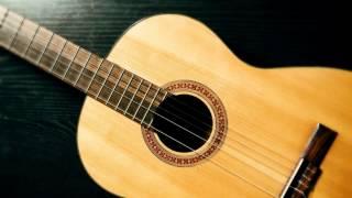 "Spanish Guitar-  Govi ""Bumblebeat"""