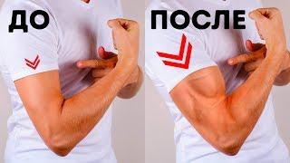 6 простых упражнений, чтобы накачать мышцы рук в кратчайшие сроки