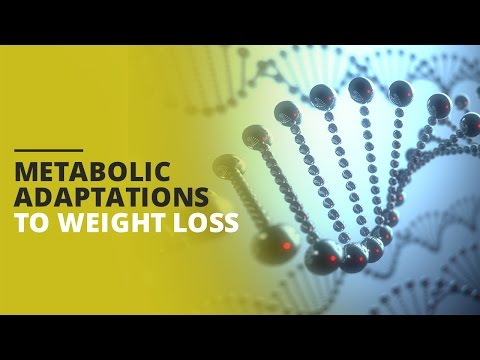 Metabolic Adaptations to Weight Loss