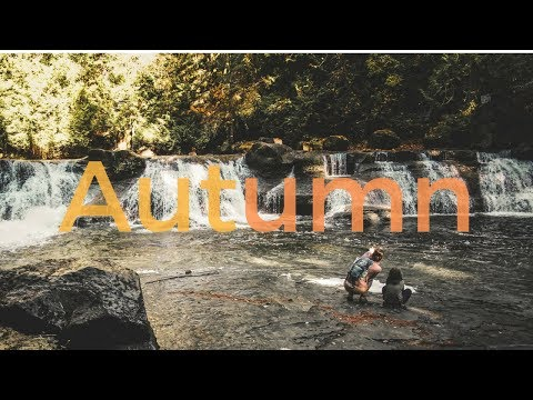 """""""I Feel Like Gold""""   Autumn in the Comox Valley"""