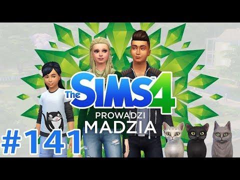 The SimS 4 #141 – Basia-Miś, dorosłe koty i wypad do parku