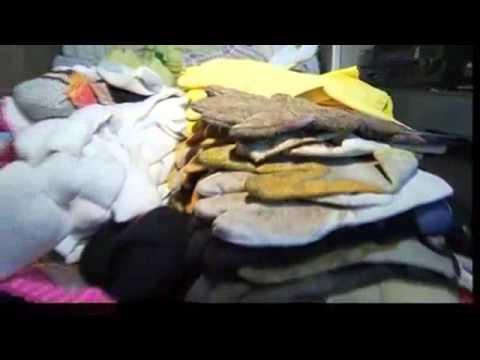 Siêu đạo chích mèo chuyên trộm quần áo chip