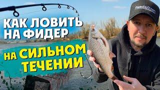 Как успешно ловить на ФИДЕР на сильном течении Рыбалка на ФИДЕР 2021 Готовим сублимированную еду