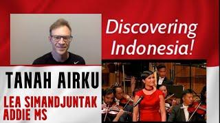 Tanah Airku (Ibu Soed), Pro Violinist Reaction