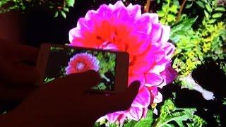 Miracast Dlna AirPlay usb Dongle для телевизора(, 2014-09-24T08:07:00.000Z)