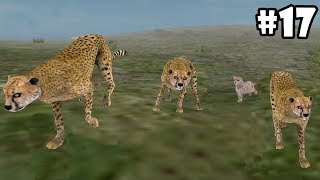 Wild Animals Online - Pack of Cheetahs - Android/iOS - Gameplay Episode 17
