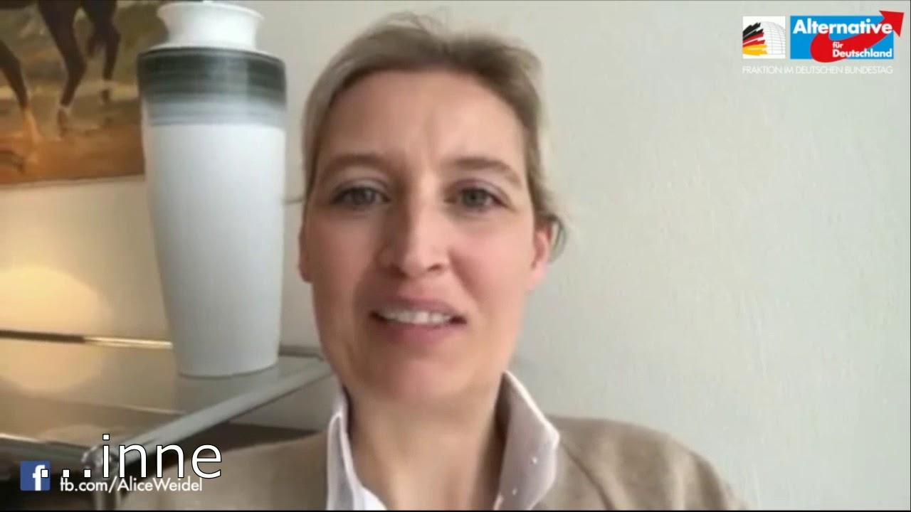 Alice Weidel über die AfD - YouTube