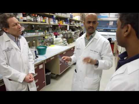 Case Comprehensive Cancer Center - Working Together to Eradicate Cancer