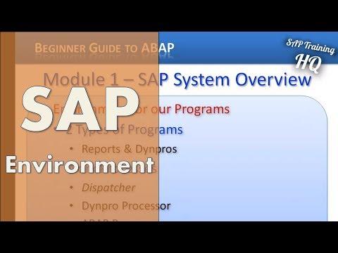 SAP ABAP Training - SAP Environment For Our ABAP Programs