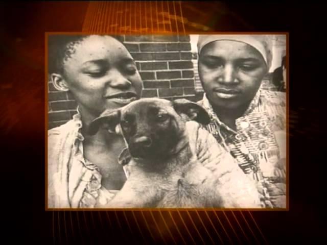 Winnie Mandela - Mzansi Icons