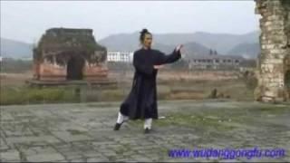 Wudang Taiji 108 - Part 1 - Master Yuan Xiu Gang (武当太极108式 - 第1段 - 袁修刚)