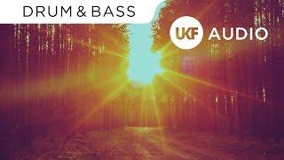DJ Fresh & Adam F - Believer (Adam F & DJ Fresh BBK Edit)