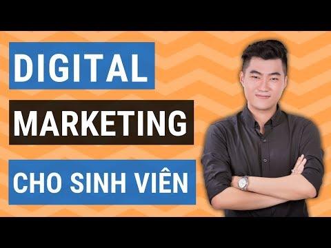 3 kỹ năng Digital Marketing sinh viên cần có