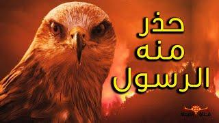 طائر شرير حذر منه الرسول هو أكبر مسبب لحرائق أستراليا .. تعرف على طائر الحدأة اخبث طائر على الارض