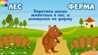 Развивающий мультик для детей Дикие и домашние животные