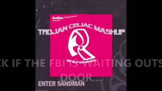 Audien Vs Metallica - Enter Wayfarer (Trojan Celiac Mashup)